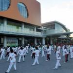 The Park Peringati Hari Taiji dan Qi Gong Sedunia